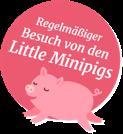 Regelmäßiger Besuch von den Little Minipigs